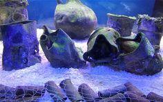 The aquarium recreated in the museum.  (scheduled via http://www.tailwindapp.com?utm_source=pinterest&utm_medium=twpin&utm_content=post104682293&utm_campaign=scheduler_attribution)