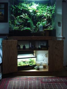 vivarium for the office