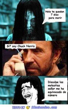 memes de chuck norris3