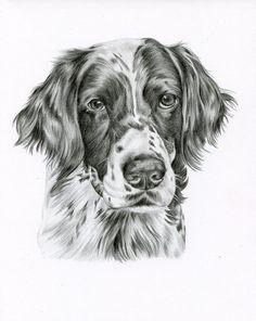 Custom Black and White Pencil Drawing size 8 x Custom Pet Portrait, Custom Pet Drawing, Dog Art, - Zeichnungen - Dog Pencil Drawing, Pencil Art Drawings, Cool Drawings, Animal Sketches, Animal Drawings, 30 Day Art Challenge, Creature Drawings, White Pencil, Drawing Skills