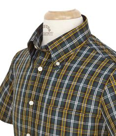 BRUTUS: FOREST GREEN/YELLOW/WHITE CHECK TRIMFIT £50.00   Rolled button-down collar (each shirt is specially packed so that the roll remains intact). Short sleeve with trademark button detail and vent. Matching breast pocket and placket Shaped and darted for perfect waist fit NevaPress© PolyCotton 65% Polyester 35% Cotton Comes with removable Red Pocket Handkerchief and Holder!
