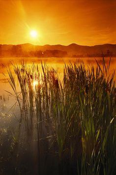 Sunrise Over A Misty Pond  **