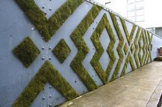Make this moss mixture and brush on to the desired surface to grow moss anywhere, in any shape or pattern