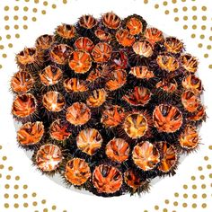 L'oursinade chez Pierrot coquillages à marseille. Composez votre plateau d'oursins pour une oursinade entre amis réussie! Oursin de galice, de carry ou de séte à chacun son oursin! http://www.coquillagespierrot.com/plateaux-de-fruits-de-mer/10-oursinade-pierrot-marseille.html