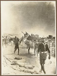 Unloading mules, ANZAC Beach Format: Silver gelatin photograph From the… Ww1 Photos, Famous Photos, Military Photos, Military History, World Empire, Gallipoli Campaign, History Images, World War One, Ottoman Empire