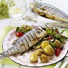 Blauer Fisch Diät bereit