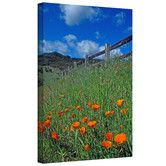 Found it at Wayfair - 'Poppies and the Fence' by Kathy Yates Photographic Print on Canvas