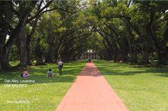 Oak Alley Plantation, Louisiana, USA May 2012