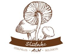 "Check out new work on my @Behance portfolio: ""Shiitake"" http://on.be.net/1QvGT9j"