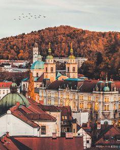 Ljubljana, Slovenia/ via Tweeter - @LukaZelko