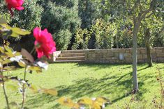 Live in heaven design Outdoor Furniture, Outdoor Decor, Hygge, Landscape Design, Greece, Heaven, Park, Live, Garden