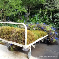 The Garden Bed - a partnership with Asda, was designed by Stephen Welch and Alison Doxey, the garden was built by Frosts Landscapes. The RHS judges awarded this Artisan Garden a Gold Medal, at The RHS Chelsea Flower Show 2016.