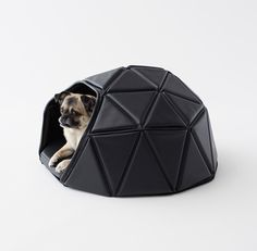 Japanese design studio Nendo has come up with a range of transformable accessories for dogs