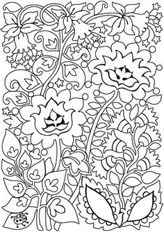 Keep Calm and Color -- Birds of Paradise Coloring Book | Dover ...