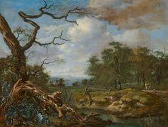 Jan Wijnants - Landschap met bosrand