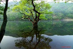 Juwangsan National Park in South Korea