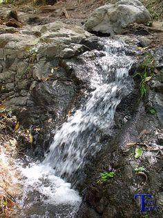 #Spain #Canarias #GranCanaria Pequeña cascada