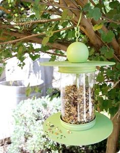 Here's a clever way to turn a plastic 2L bottle into an attractive bird feeder. It's a fun DIY project, and you'll make many new feathered friends. See it on Centsational Girl. || @centsationalgrl