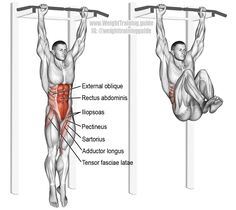 Hanging leg and hip raise. One of the most effect core exercises. See website for details. Muscles worked: Rectus Abdominis, Iliopsoas, Tensor Fasciae Latae, Sartorius, Pectineus, Adductor Longus, Adductor Brevis, and Internal and External Obliques. Without contraction of abdomen, abs only act as synergists, and the exercise becomes just a hanging leg raise. Clique aqui http://www.estrategiadigital.pt/e-book-gratuito-ferramentas-para-websites/ e faça agora mesmo Download do nosso E-Book…