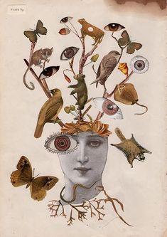 Dada Collage, Collage Kunst, Art Du Collage, Surreal Collage, Collage Artists, Surreal Art, Art Collages, Collage Design, Art And Illustration