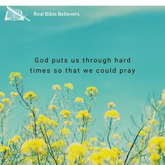 God puts us through hard times so that we could pray, and that He is going to take care of us, as well as our trials and problems. ⁠ .⁠ .⁠ .⁠ .⁠ ⁠ #pastorgenekim #sjbbc #biblebeliever #kjvbible #dispensationalism #christian #christianliving #JesusChrist Christian Living, Christian Life, Bingo Quotes, Psalm 27, 1 Real, Praise God, Hard Times, Take Care, Trials