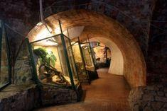 Pécs nevezetességei, kiránduló helyek, programok Budapest, Oversized Mirror, London, London England