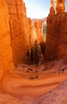 Navajo Trail, Sunset Point - Bryce Canyon National Park, Utah