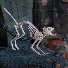 Halloween Skeleton Cat - OrientalTrading.com