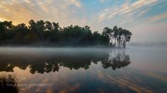 Morning mist by didierlacombe. Please Like http://fb.me/go4photos and Follow @go4fotos Thank You. :-)