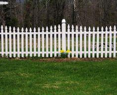 Google Image Result for http://www.sunsetfencevt.com/files/2012/05/white-picket-fence-1.jpg