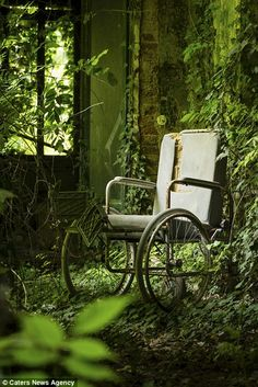 Abandoned and Green, The Italian asylum known as Manicomio abandoned in 1978 by law. Old Abandoned Buildings, Abandoned Asylums, Old Buildings, Abandoned Places, Haunted Asylums, Photo Post Mortem, Magic Places, Abandoned Hospital, Arte Obscura