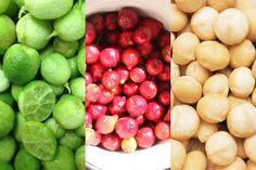 Australian bush tucker foods - desert limes, quandongs and macadamias