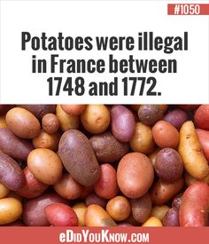 potatoes were illegal Wierd Facts, Unusual Facts, True Facts, Random Facts, Interesting Facts, Weird, Did You Know Trivia, Did You Know Facts, Things To Know