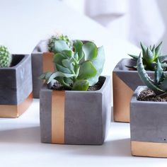 Modern gray and copper cube concrete planter pot with square saucer and copper painted vertical strip Süßer Kupfer Beton Pflanzer von Atelier IDeco Diy Concrete Planters, Concrete Pots, Diy Planters, Planter Ideas, Do It Yourself Decoration, Copper Paint, Succulent Planter Diy, Succulents Garden, Pot Plante