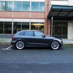 Audizine Forums Audi Dealership, R8 Gt, Panamera Turbo S, Gold Wheels, Sepang, Audi S4, Yamaha Yzf R6, Pictures Of You, Car