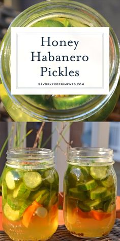Honey Habanero Pickles are the best of both worlds, spicy and sweet. Eat them as a snack or pair them your favorite burger or hot dog. Fermentation Recipes, Canning Recipes, Canning Jars, Canning 101, Canning Peppers, Habanero Recipes, Cucumber Recipes, Spicy Pickle Recipes, Pickling Cucumbers