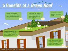 Wat zijn de 5 voordelen van een #groendak? @milieucentrum @duurzamestad @icdubocentrum #groenedaken via @dakwaarde