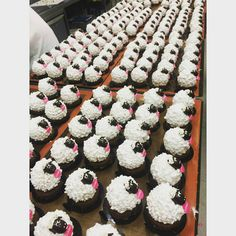 """""""Sheepster Cakes in the paddock getting ready to be shorn from last night's Function Zumbo Cakes, Adriano Zumbo, Fancy Desserts, Shearing, Sheep, Night, Instagram Posts, Food, Elegant Desserts"""
