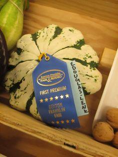 Squash awards