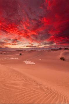 ponderation:  Mesquite Sand Dunes by Mathias Unterstein
