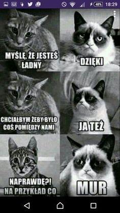 Nu i oke ^^ Haha Funny, Funny Jokes, Hilarious, Polish Memes, Funny Motivation, Weekend Humor, Funny Mems, Funny Video Memes, 3d Max