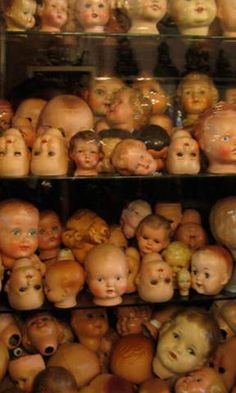 baby heads in a glass case