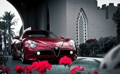 Alfa Romeo 8C stunning photography. This might look like an innocent photo but don't be fooled… the Alfa Romeo is a beast! Hit the link to see more http://www.ebay.com/itm/Alfa-Romeo-8C-Competizione-Sports-Car-18X24-Poster-Car-Auto-/321349419562?pt=Art_Posters&hash=item4ad1eb022a?roken2=ta.p3hwzkq71.bsports-cars-we-love
