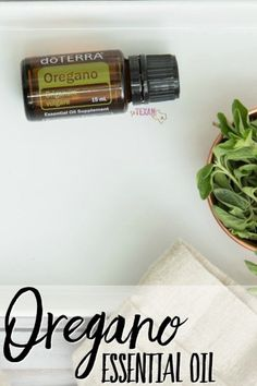 Oregano essential oi