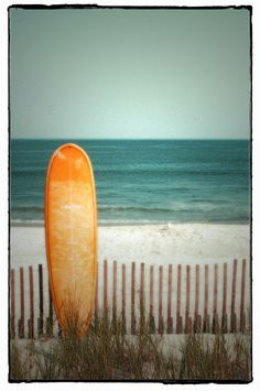 Lover the color orange on a surfboard