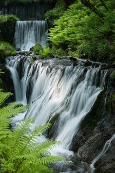 Shiraito Falls 白糸の滝 Japan