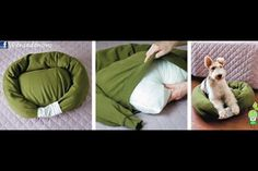 "Dog bed from a sweatshirt! DOGTV DIY dog bed! You will need: an old sweatshirt, bed pillow, polyfill or other stuffing, one lucky dog. 1. stuff sleeves and shoulder/collar area of sweatshirt (you might need to put in a few stitches to create a ""pocket"" in the body of the shirt.)2. insert pillow through bottom of shirt.3. stitch end of sleeves together 4. attach pillow ""ring"" to bed bottom with a few stitches. Enjoy! —"