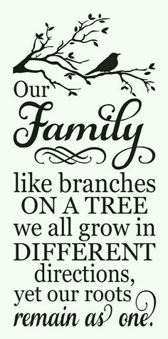 Trendy family tree painting on canvas diy stencils Painted Signs, Family History, Favorite Quotes, Embroidery Designs, Embroidery Thread, Stencils, Life Quotes, House Quotes, Inspirational Quotes