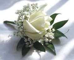 buttonhole rose gyp - Google Search