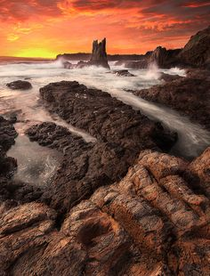 Kiama, NSW, Australia South Coast Nsw, Australia Living, Future Travel, South Wales, The Locals, Seaside, Places Ive Been, Sunrise, Surfing